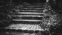 Steps, Black And White Picture...