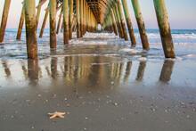 Myrtle Beach Pier. Starfish On...