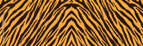 Canvas-taulu Background with a pattern of tiger stripes, tiger color