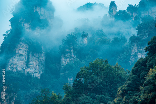 Tablou Canvas Amazing landscape of mountain and forest in the foggy at Wulingyuan, Hunan, China