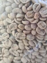 Raw Coffe Beans