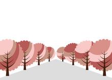 桜の並木道 イラスト