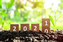 Changing Year 2020 To 2021 In Wooden Blocks Cubes With Growing Plant. New Year, Hope,  Hello And Goodbye Concept.