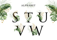 Alphabet Set Of S  T  U  V  W With Tropical Leaves Watercolor And Gold Leaves. For Logo, Initial Name, Branding, Card, Identity, Etc.