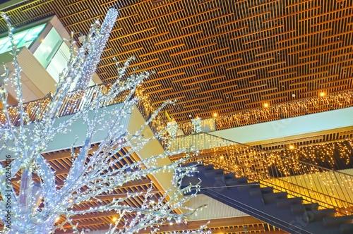 Obraz na plátně 和歌山市駅