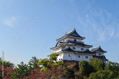 紅葉に映える和歌山城 Fotobehang