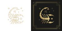 Zodiac Scorpio Horoscope Sign Line Art Silhouette Design Vector Illustration