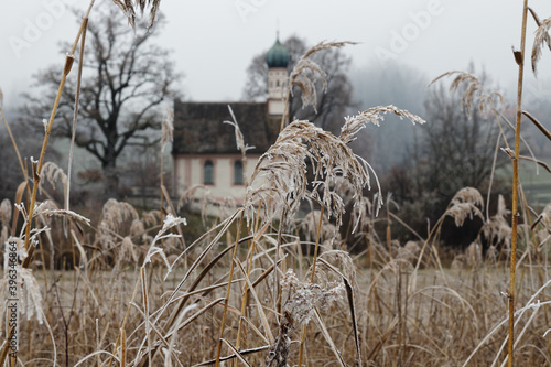 Mit Raureif überzogene Gräser, mit Kapelle im unscharfen Hintergrund, Süd-Bayern, Deutschland © si2016ab