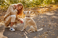 Woman And Friendly Nice Dog In The Forest, Blonde Caucasian Female In Coat Among Fallen Leaves At Sunny Autumn Day