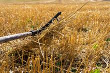 Rustic Rake In A Harvested Fie...