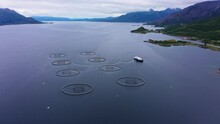 Aerial View Of Fish Farm Boat At A Aquaculture Of Salmonids Hatchery, Cloudy Day- Pull Back, Drone Shot