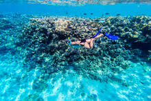 Man In Snorkeling Mask Dive Underwater With Tropical Fishes In Coral Reef Sea Pool. Travel Lifestyle, Water Sport Outdoor Adventure, Swimming On Summer Beach Holiday. Underwater Shooting