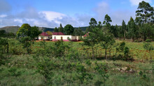 African House With Rondavel In The Countryside Amid Green Fields And Surrounded By Trees, Swaziland, Africa, Panoramic Landscape View, Swaziland, Africa