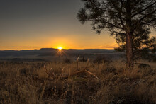 Western Sunset On Shed Elk Antler In Grass