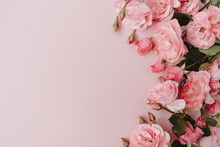 Beautiful Pink Roses Flowers On Pink Background. Flatlay, Top View Minimalistic Floral Composition. Valentine's Day / Mother's Day Holiday Concept.