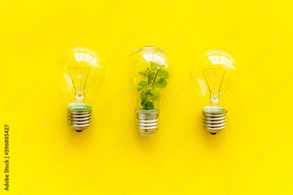 Fototapeta Light bulb with green grass - renewable energy eco concept
