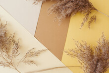 Dry Pampas Grass Reeds Agains On Earthy Brown, Gold, Beige, White Paper Geometric Background. Minimal, Stylish, Trend Concept. Flat Lay, Top View, Copy Space. Trend Color 2021