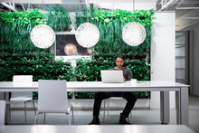 Man With Laptop By Green Wall In Modern Office