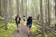 Women Hiking Through Forest