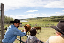 Male Ranchers Watching Cattle In Sunny Ranch Pasture