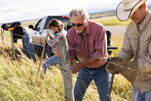 Ranchers Building Barbed Wire Fence On Sunny Rural Ranch