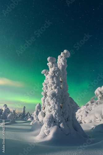 Fotografija Beautiful northern lights, stunning Arctic regions, popular travel destinations in Europe
