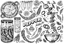 Red Hot Chili Peppers In Vintage Style. Salad Ingredients. Farm Vegetable. Vector Illustration. Hand Drawn Engraved Retro Sketch. Doodle Style