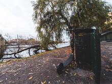 Stockholm, Sweden - November 3 2019 : Electric Scooter Parked By Garbage Bin