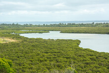 The View Of The Rhyll Inlet Wetlands And Mangroves On Phillip Island, Victoria, Australia