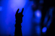 canvas print picture - Devil's horns at a rock concert. Applause during the big show. Hands of fans at a concert