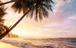 canvas print picture Coast in Costa Rica
