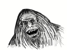 The Face Of The Legendary Bigfoot. The Yeti Is A Mysterious Humanoid Creature That Has Been Preserved Since Prehistoric Times.