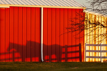 Shadow Of Two Horses And A Three Rail Fence On A Bright Red Pole Building