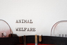 Animal Welfare Phrase