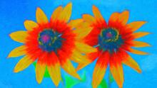 Impressionnisme. Variété De Fleurs Appelée Rudbeckia Aux Yeux Noirs