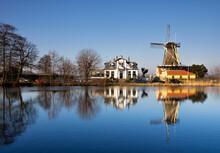 Windmill De Lelie
