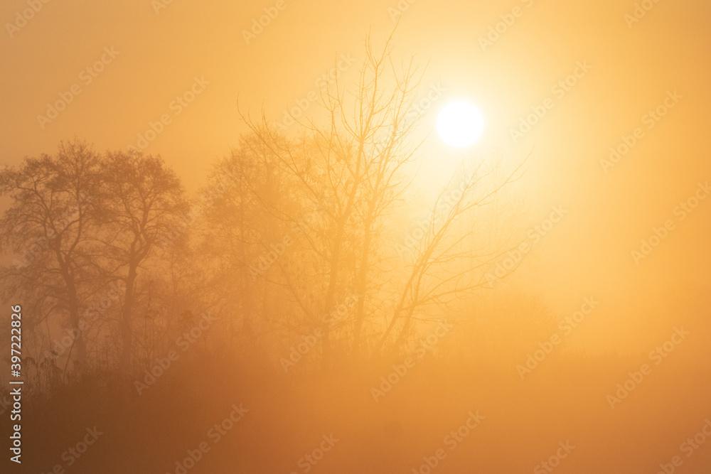 Fototapeta misty sunrise