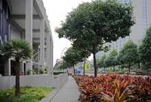 In The Surroundings Of The Marina Bay Sands Hotel