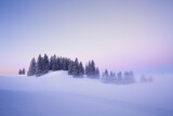 Picturesque winter landscape of snowy valley covered by coniferous woods at sunset