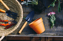 Gardening Tools And Flowers With Soil
