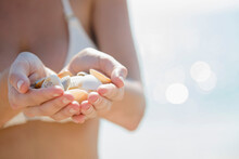 Close Up Of Caucasian Woman Holding Seashells At Beach