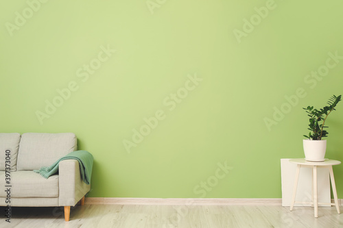 Sofa with plaid and table near color wall in room Fototapeta