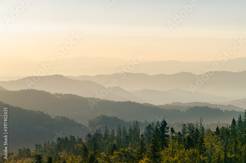 Gorce o świcie, widok ze szczytu Magurki, szczyty w porannych mgłach - fototapety na wymiar