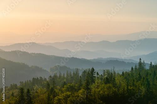 Gorce o świcie, widok ze szczytu Magurki, szczyty w porannych mgłach