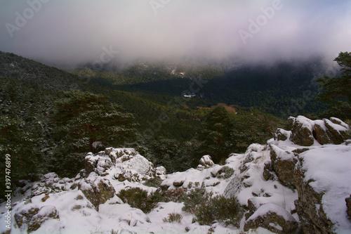 Fototapeta krajobraz góry drzewa natura śnieg las  obraz