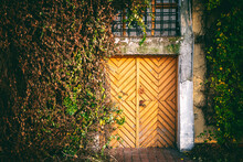 Wooden Door And Walls In Ivy And Plants, An European Architecture Concept