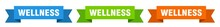 Wellness Ribbon. Wellness Isolated Paper Sign. Banner