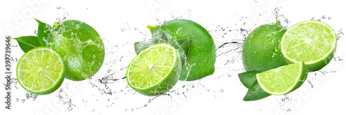 Fototapeta Fresh Limes with water splash on isolated white background obraz