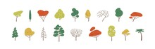 Set Of Deciduous And Evergreen Forest Plants. Botanical Collection Of Bare Trees And Ones With Leaves And Lush Yellow, Green And Orange Crowns. Colorful Flat Vector Illustration On White Background