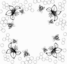 Bee Frame Made Of Propolis Linden Flowers With Copy Space. Vector Graphic Illustration